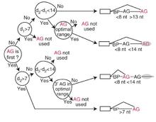 id3 algorithm wikipedia