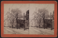 Ice storm, Winter of 1890. Colony Street North from Columbia, from Robert N. Dennis collection of stereoscopic views.png