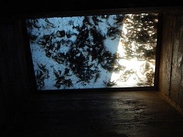 Iluminación baños con hojas de otoño. Recorrido Open Kids por los pabellones del Parque Independencia.jpg