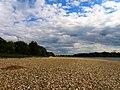 Im Himmelgeister Rheinbogen - panoramio.jpg