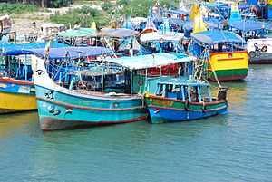 Cuddalore - Fishing boats in Cuddalore