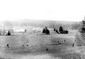 Infanteristen beim Angriff in offenem Gelände - CH-BAR - 3241231.tif
