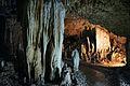 Ishigaki-Cave14s5s4592.jpg