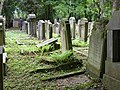 Jüdischer Friedhof Köln-Bocklemünd - Gräberfelder (05).jpg