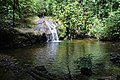 Jacuzzi Pool @ Danum Valley (11822569103).jpg