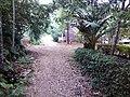 Jalan menuju rumah Istiqomatul Qiromach putri Bpk Imam Said, Sumberrejo, Bandungrejo, Bantur, Malang - panoramio.jpg