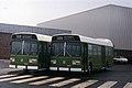 Jamaica Omnibus Service 1.jpg