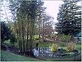 January Frost Botanic Garden Freiburg - Master Botany Photography 2014 - panoramio (14).jpg