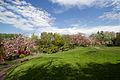 Jardin japonais - Toulouse - 2012-04-10 - 1.jpg