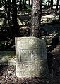 Jewish cemetery Sobienie Jeziory IMGP2957.jpg