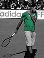 Jo-Wilfried Tsonga (3852200600).jpg