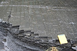 Utica Shale - Rectangular joints within siltstone and black shales of the Utica Shale near Fort Plain, New York