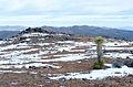 Joshua Tree National Park (24042250440).jpg