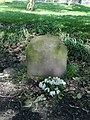 Judy the donkey's grave, Princes Park Liverpool.jpg
