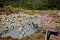 Jurvetson - Extreme Mud Bath (by).jpg
