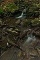 Kamenistý potok, Národná prírodná rezervácia Stužica, Národný park Poloniny (02).jpg