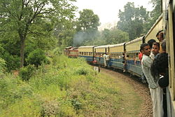 Kangra valley rail.jpg