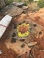 Karighatta rock footsteps .jpg