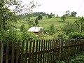 Karpathia oroi,oukrania - panoramio (1).jpg
