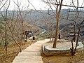 Kebun Buah Mangunan - panoramio (3).jpg