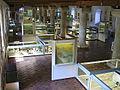 "Kelheim Archaeological museum ""Herzogskasten"".JPG"