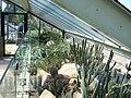 Kew Garden Visit (3656919120).jpg