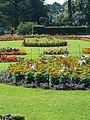 Kew Gardens P1170552.JPG