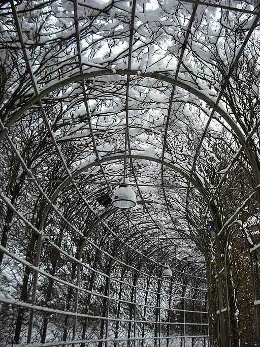 Kleve forstgarten winter 2