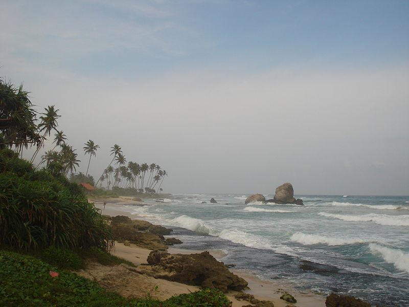 Near Koggala beach