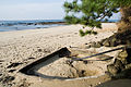 Kotohiki Beach hot spring in Kyotango Japan.jpg