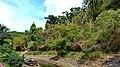 Krabi 2015 april - panoramio (38).jpg