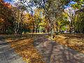 Kyiv Internatsionalny Park8.JPG
