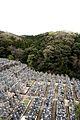 Kyoto graveyard.jpg
