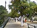 L'ancienne promenade de Létang. Sur les hauteurs d'Oran.jpg