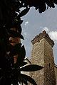 La Torre degli Embriaci.jpg