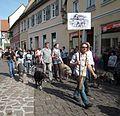 Ladenburg Irish Wolfhound Club Sommertagszug.JPG