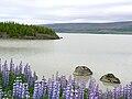 Lagarfljót Iceland.jpg