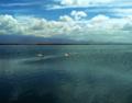 Lake Amboseli.png