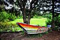 Lake Hawassa (7954406338).jpg