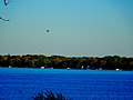 Lake Monona - panoramio (2).jpg