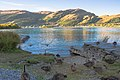 Lake Wakatipi near sunset, Queenstown, New Zealand - panoramio (17).jpg