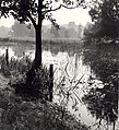 Landgoed Caprera, ziende naar het zuidwesten. Aangekocht in 1977 van fotograaf C. de Boer.JPG