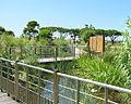 Le parc Fernand Braudel - La Seyne-sur-Mer.jpg