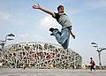Leap (2819644318).jpg
