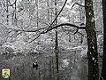 Little River Refuge (11088129195).jpg