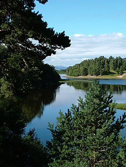 Loch Insh through the trees - geograph.org.uk - 1574283