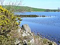 Loch Kindar Shore - geograph.org.uk - 397631.jpg