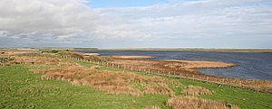Loch of Strathbeg - View across the loch