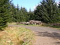 Log Pile in Carron Valley Forest - geograph.org.uk - 171357.jpg
