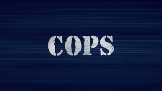 <i>Cops</i> (TV program) American reality documentary police series